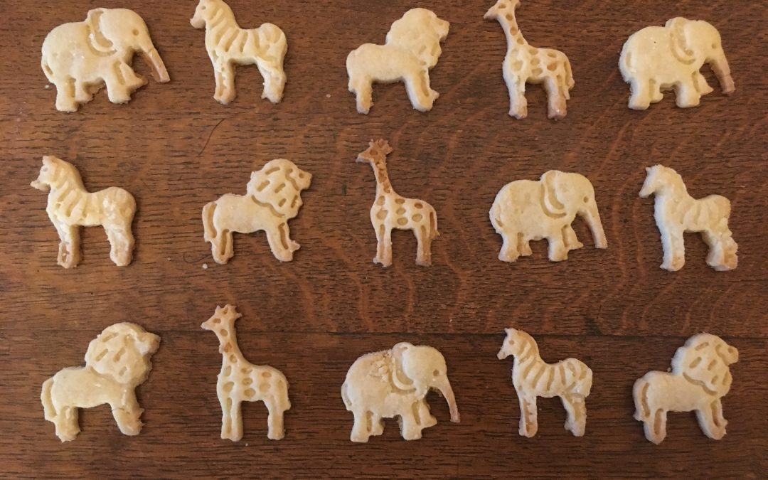 Best Animal Cookie Recipe EVER (and it's all yours for FREE)